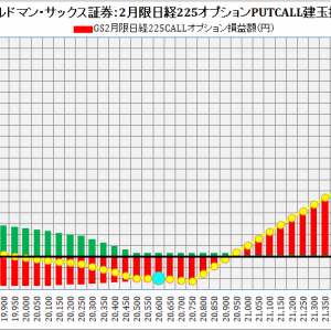 Goldman Sachs Japan Co., Ltd.:ゴールドマン・サックス証券2月限日経225オプション建玉損益分岐点:2019年1月22日(火)現在