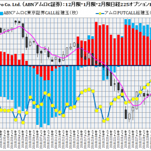 ABN AMRO Clearing Tokyo Co. Ltd. :ABNアムロクリアリング東京証券2月限日経225オプション建玉損益分岐点:2019年1月24日(木)現在