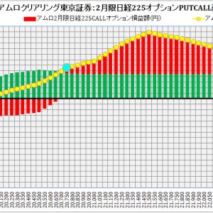 ABN AMRO Clearing Tokyo Co. Ltd. :ABNアムロクリアリング東京証券2月限日経225オプション建玉損益分岐点:2019年1月25日(金)現在
