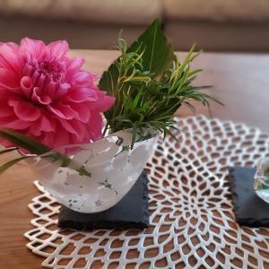 【掃除】お花を欠かさない目!生花に限る!