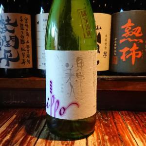 東洋美人純米大吟醸羽州誉!昨日は日本酒蔵の方々とのゴルフからの営業でした!
