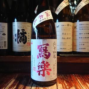 冩樂純米吟醸酒未来!