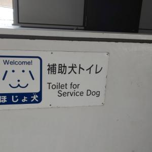 補助犬トイレ。