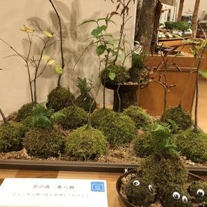Go To 星野リゾート 奥入瀬渓流ホテルの旅 2日目