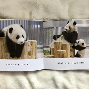 パンダに癒してもらってる