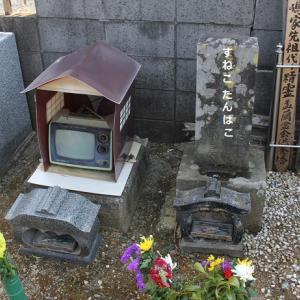 彼岸の墓地