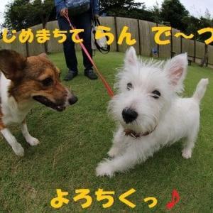 はじめまちて!!