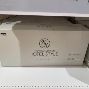 ニトリで見つけたホテルスタイルの素敵なペットベッド