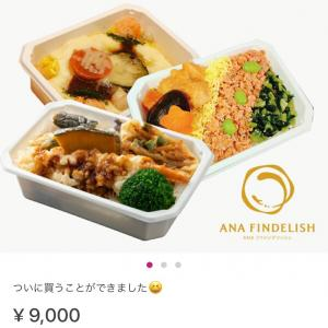 ANAの機内食セットを楽天で買いました