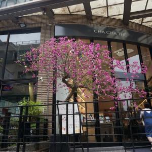 食後の散歩とお買い物タイム in 永康街