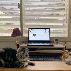 気持ちよく始めるためには机の上は何も無しがいいですね!