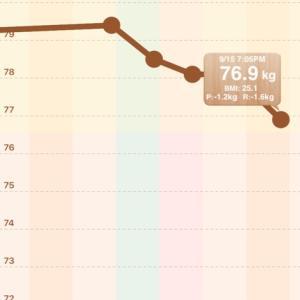 【男の減量】78.1→76.9【2020/09/15】