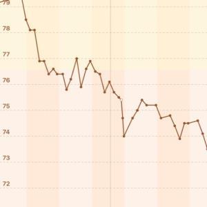 【男の減量】74.1→73.5kg【2020/10/21】