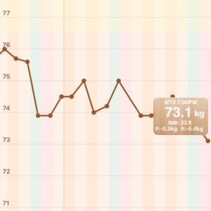 【男の減量】73.6→73.1kg【2021/06/13】