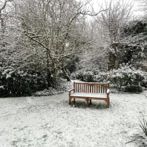 ロックダウンの日曜の雪は嬉しいプレゼント