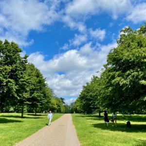 夏日のケンジントンパーク散歩とタパスランチ