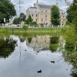 日曜はウィンブルドンヴィレッジにのんびり散歩
