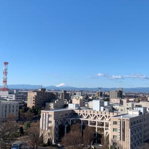 『還暦』こりゃめでたい!富士山が届いた⁉︎