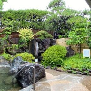 露天風呂の植栽