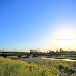 春 × 電車 vol.1