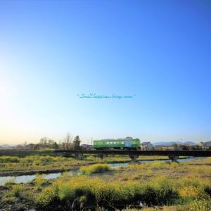 春 × 電車 vol.7