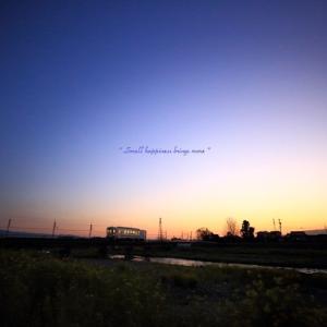 春 × 電車 vol.8