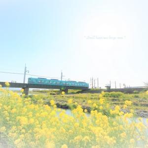 春 × 電車 vol.9