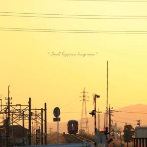 春 × 電車 vol.11