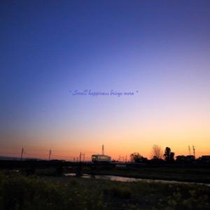 春 × 電車 vol.14