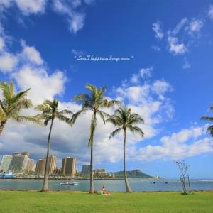 Aloha Hawaii vol.28