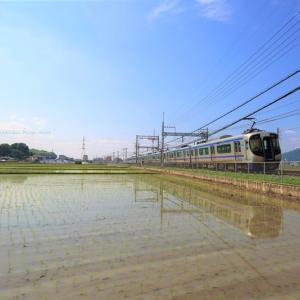 初夏 × 電車 vol.3