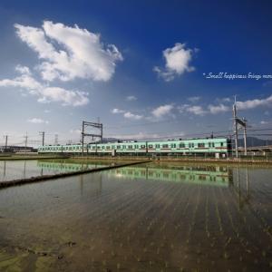初夏 × 電車 vol.4