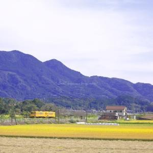 秋 × 電車 vol.2