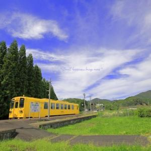 秋 × 電車 vol.3