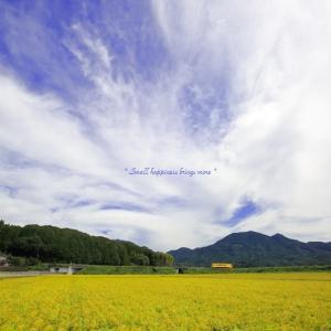秋 × 電車 vol.6