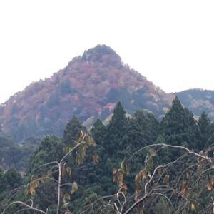 東京シリウスツアー 6 武蔵御嶽神社