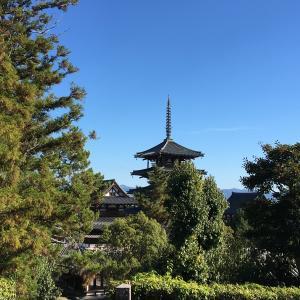関西シリウスツアー 8 法隆寺