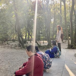 日本ピースツアー 7 唐招提寺