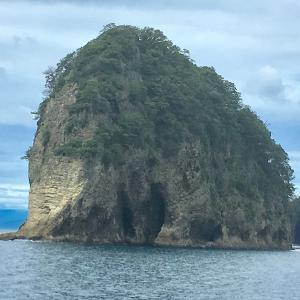 伊豆半島ミラクルツアー 3 化石