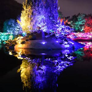 栗林公園『光の祭』~その8~