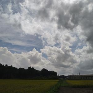 カミナリ雲の空