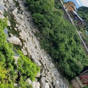 鳥の鳴き声、川の音、木々の緑YouTube動画配信中