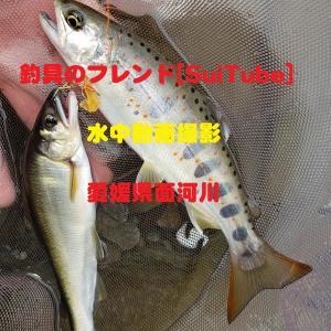 [釣り場紹介]YouTube動画配信中