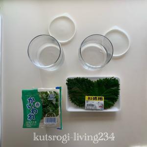 【冷蔵庫]食品ロスを防ぐ保存方法