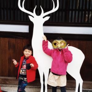 今年の蔵開きは白鹿で^^