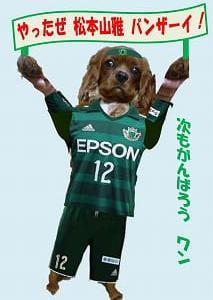 松本山雅・柴田監督5試合ぶりの勝利塚川選手のゴールを守り切る
