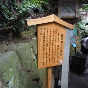 狭井神社 霊泉