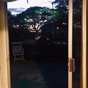 ハワイの朝⭐️朝起きたら、、、。