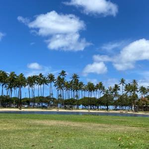 アラモアナビーチパークでピラティスをはじめた。
