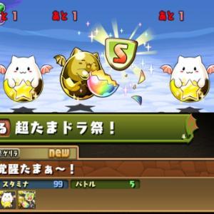 【パズドラ】10月26日(火)のゲリラ時間割【キングダイヤドラゴンの逆襲/大収穫!宝玉ラッシュ!/超たまドラ祭】